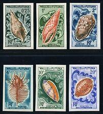 Wallis und Futuna 1962 Meeresschnecken Shells Muscheln 193-98 U Imperf MNH