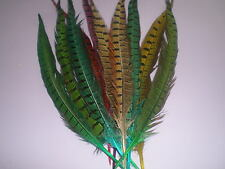 10 grandes plumes faisan teintées de 30 cm