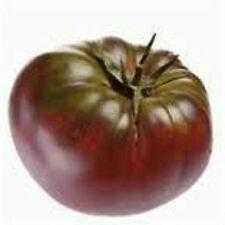 Cherokee Purple Tomato seeds 20 seeds! *Heirloom* Seeds Of Life