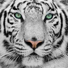 Stoff Jersey XXL Panel Baumwolle weißer Tiger Tier weiß schwarz