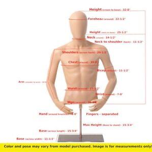 Male mannequin dress form +metal stand,  Skin Tone men torso manikin -YMT-2FT