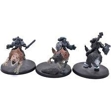 Warhammer 40K Space Marine Wolves Wolf Thunderwolf Cavalry x 3 Painted