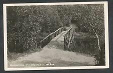 Gaasterland  Wandelpaadje in het bos