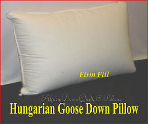 HUNGARIAN GOOSE DOWN FIRM PILLOW  QUEEN   FILL POWER