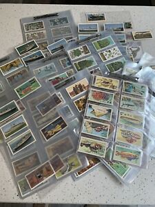 A Large Collection Of Tea Cards Appx 400 Wallets Not Included