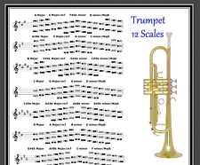 LEAD TRUMPET - 12 SCALES POSTER - IMPROVISE IN ANY KEY