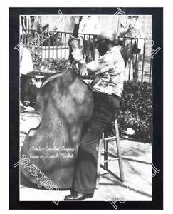 Historic Chester Zardis in French Market Jazz Postcard