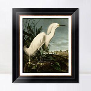 Framed Canvas Art Giclee Print Snowy Heron or White Egret by John James Audubon