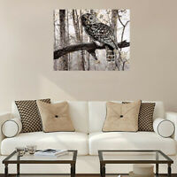 40*50cm Owl Forest Birds Canvas Paint By Number Kit Art DIY Picture Home Decor
