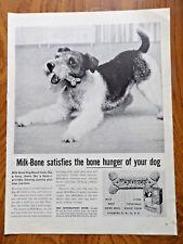 1959 Milk-Bone Dog Food Ad Terrier Dog
