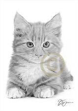 Cat KITTEN pencil drawing artwork A4 size by UK artist Pet Portrait