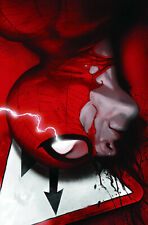 Marvel Comic AMAZING SPIDER-MAN #614 (2009) File Photo
