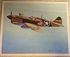 "Beautiful Brian Knight Airplane Print- ""Curtiss P-40 Warhawk"" - Full Description"