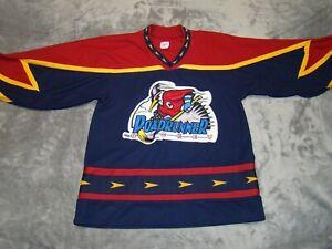 Vtg CCM Mens S Phoenix Roadrunner 1990s AK IHL Minor League Blank Hockey Jersey
