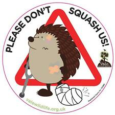 **NEW** 'Please Don't Squash Us' Hedgehog Car Sticker (adhesive on BACK)