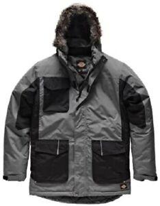 Dickies Winter Parka , grau/schwarz, Gr. L Jacke