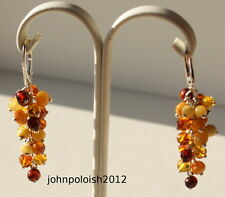 Multicoloured Baltic Amber Drop Earrings on Silver 925