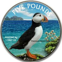 2019 Alderney Puffin - 1 Ounce Pure Silver Colorized Coin!!