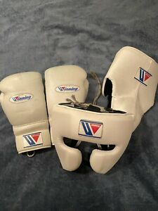 Winning Boxing Gloves Headgear Cup Sparring Set (Fly, Grant, Reyes, Rival)
