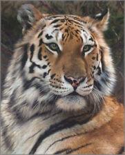 """Carl Brenders """" Last Watch """" Tiger S/N $1000 Value Rare MINT"""