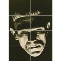 Frankenstein Horror Old Movie  Giant Wall Mural Art Poster Print 33x47 Inches