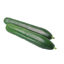Summer Full Sun Cucumber Vegetable Plant Seeds