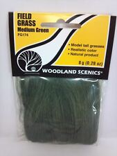 Woodland Scenics Field Grass #174 - Medium Green  FG174 model train scenery New