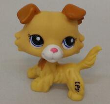 Littlest pet shop LPS figure Golden Cream Hair Collie Dog Lps256