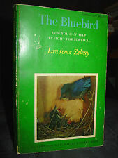 The Bluebird: How You Can Help Its Fight for Survival, Behavior, Nesting Boxes