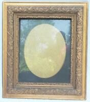 """Antique 25-1/2""""x29-1/2"""" Painted Gold Wood Ornate Picture Frame for ~ 15-1/2""""x19"""""""