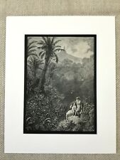 1870 Woodland Landscape Atala Chateaubriand Fantasy Art Antique Print