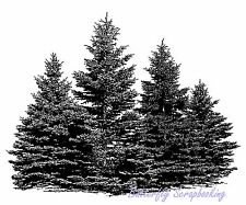 Pine Tree Small Evergreen Patch Cling Unmounted Rubber Stamp MAGENTA C0706-I NEW