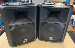 Warrior L-300 Pair of Loud Speakers 300W 8 Ohms Disco Party Rave System