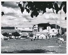 INDE c. 1950 - Usine de Papier Bhadravati Mysore État du Karnataka  - GF 149