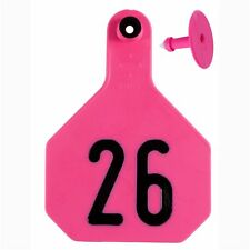 Y-Tex Large 4-Star Tags Adult Cattle Fade TearResistent #26-50 Hot Pink 25ctpkg