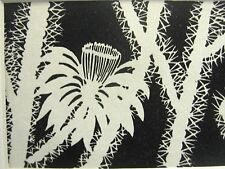 Don Blanding 1948 CACTUS FLOWER Art Deco Print Matted