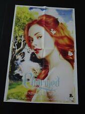 poster - Charmed Rose McGowan & Dawson's Creek Katie Holmes Joshua Jackson