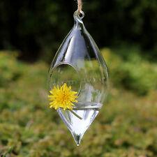 Hanging Glass Flowers Plant Vase Terrarium Home wedding Christmas Decor 001