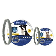 8 Month Flea Tick Collar for Pet Adjustable Accessories Cute