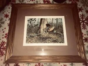 woodcock print signed numbered and framed