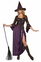 Women's Wicked Witch Hocus Pocus Long Purple Dress Halloween Costume Salem Adult
