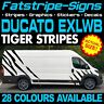 FIAT DUCATO L4 EXLWB TIGER STRIPES GRAPHICS STICKERS DECALS CAMPER VAN MOTORHOME