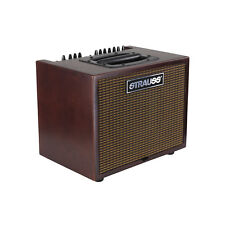 STRAUSS SAA-T60 60 WATT ACOUSTIC GUITAR AMPLIFIER COMBO WITH EFFECTS REDWOOD
