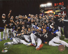 2017 Chicago Cubs Celebrate Winning over Washington Nationals 8x10 Photo