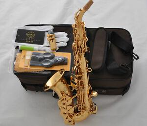 Professional TaiShan Gold Curved Soprano Saxophone Abalone shell Keys Bb sax New