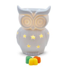 Wax burner -Snowy Owl Electric wax melt warmer with light, dimmer & autumn tarts