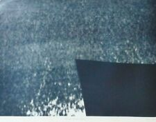 HANS HARTUNG H-25-1976 Hommage a Eva Bergman HAND SIGNED LIM 5/95 Woodcut German