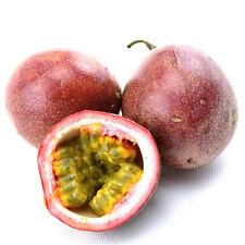 40Pcs Tropical Exotic Passion Fruit Seeds Purple Passiflora Edulis HOT