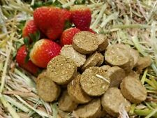 Strawberry & Oaten Hay Cookie Treats for Pet Bunny Rabbits