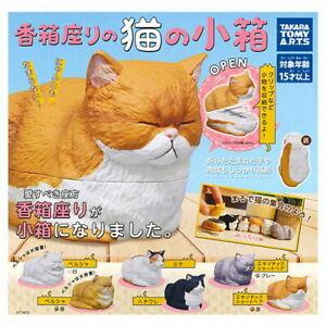 Takara Tomy Capsule Gashapon Koubako Cat Mini Box Stationery Full Set 6 pieces